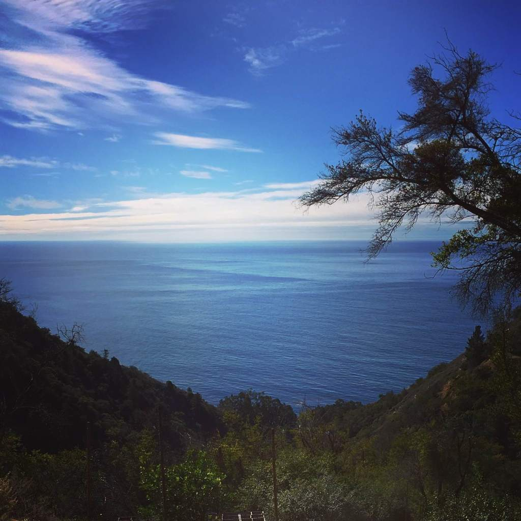 big sur coast shot